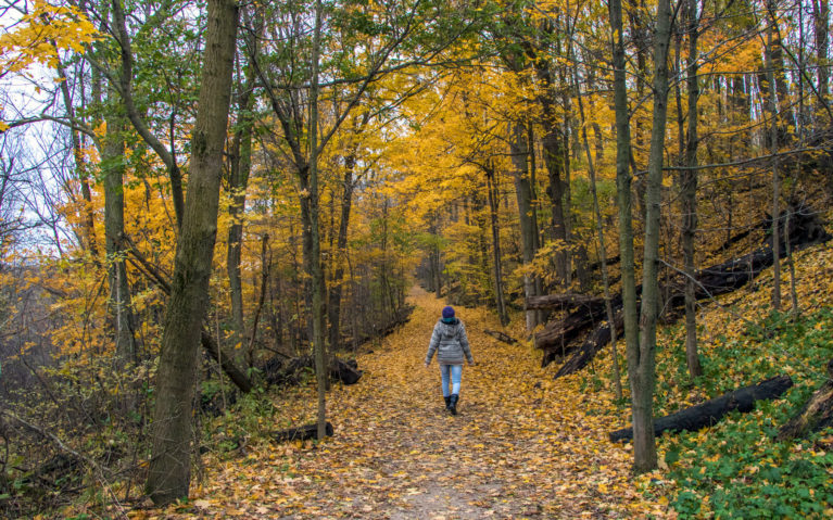 Walking Along the Homer Watson Trail in Kitchener, Ontario :: I've Been Bit! A Travel Blog