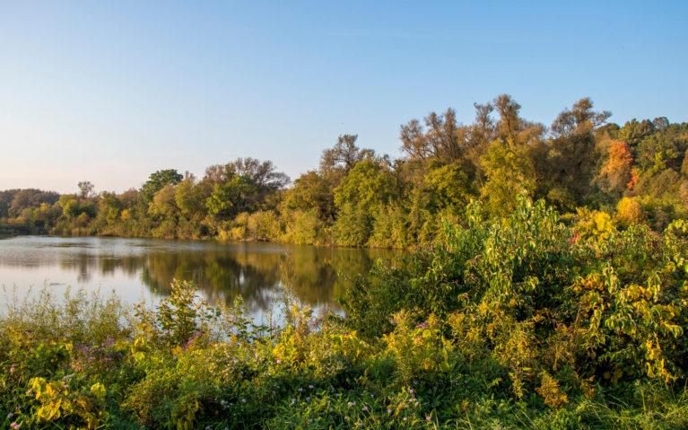 Views of the Grand River Along the Walter Bean Trail :: I've Been Bit! A Travel Blog