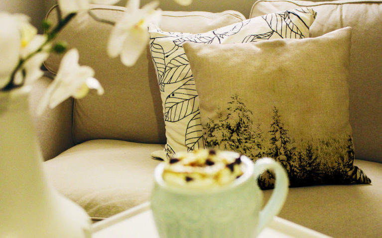 A Beautiful Throw Pillow Makes a Great Accent in Every Nature Lover's Home :: I've Been Bit! A Travel Blog