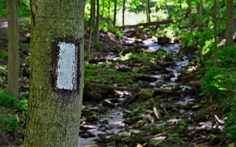 Blaze of the Bruce Trail, One of the Main Hamilton Hiking Trails :: I've Been Bit! A Travel Blog