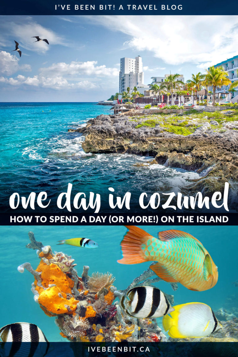 Whether you're spending one day in Cozumel Mexico or longer, there's lots to see and do! This Cozumel itinerary will help you plan your visit! | Things to Do in Cozumel Mexico | Cozumel Mexico Beaches | Cozumel Mexico Pictures | Cozumel Day Trip | Day in Cozumel | Cozumel Port Day | Day Trip to Cozumel | Restaurants in Cozumel | insider tips for visiting Cozumel and more! | #Cozumel #Mexico #Summer | IveBeenBit.ca