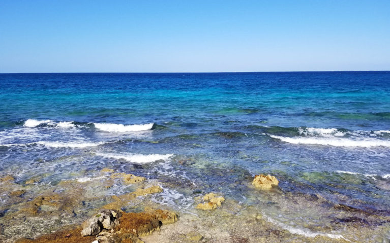 Cozumel shore waters :: I've Been Bit! A Travel Blog