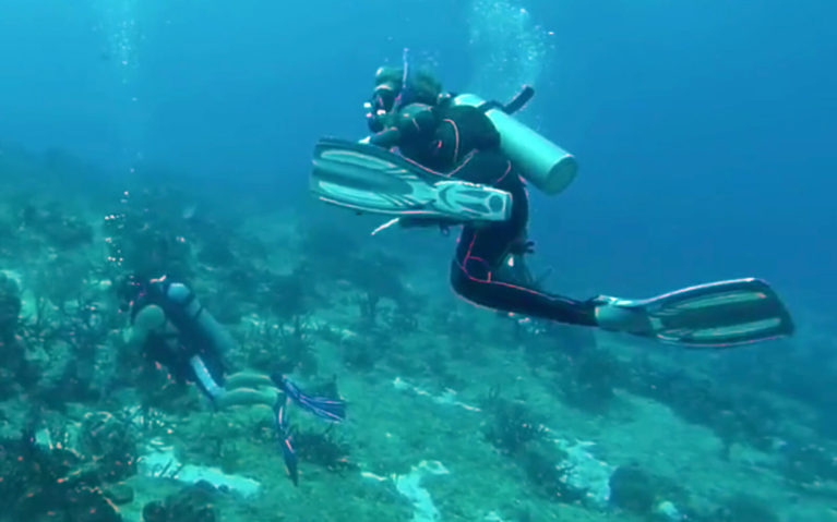 Scuba Diver Underwater in Cozumel, Mexico :: I've Been Bit! A Travel Blog