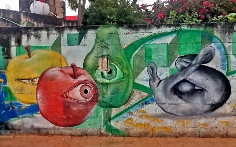 Fruit with Eyes Graffiti in Cozumel :: I've Been Bit! Travel Blog