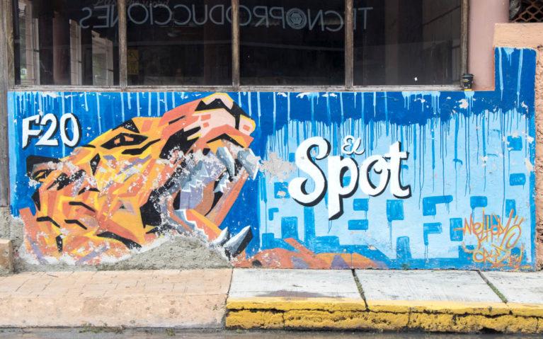 Melhor F20 Leopard Mural in Cozumel Mexico :: I've Been Bit! Travel Blog