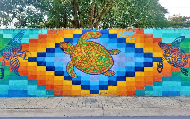 Pangeaseed's Sea Murals for Oceans by Mexican Artist Melhor in Cozumel, Mexico :: I've Been Bit! Travel Blog