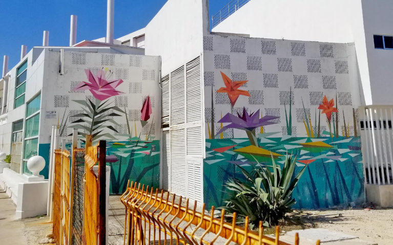 Flowers on the Wall by the Port in San Miguel de Cozumel :: I've Been Bit! Travel Blog