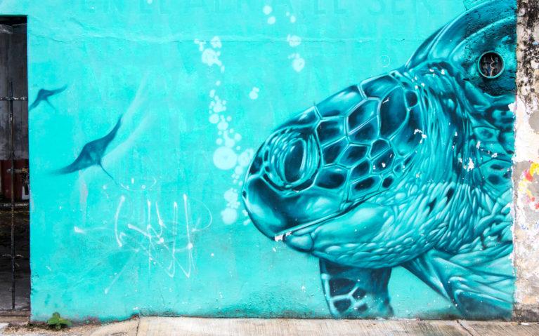 Sea Turtle Close Up Mural in Cozumel :: I've Been Bit! Travel Blog