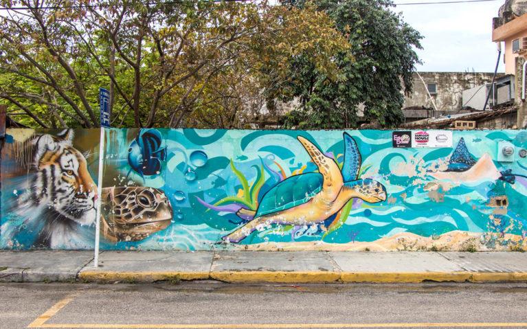 Tiger and Sea Turtle Mural :: I've Been Bit! Travel Blog