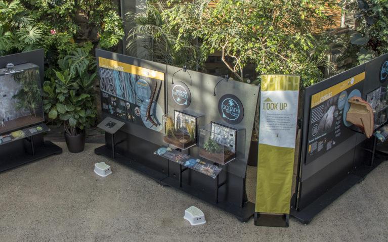 Royal Botanical Gardens Exhibit for Spiders Alive! :: I've Been Bit! Travel Blog