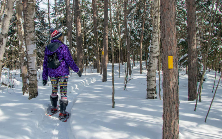 Lindsay Snowshoeing the Trails of Hiawatha Highlands in Sault Ste Marie :: I've Been Bit! Travel Blog