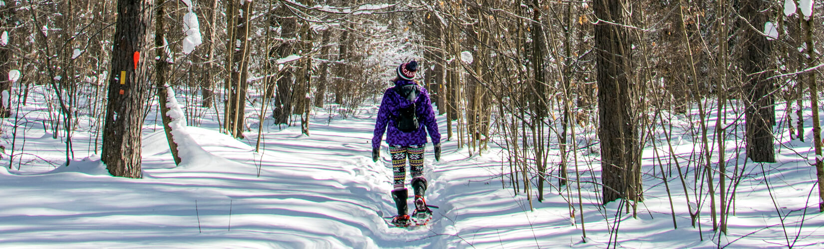 5 Snow-mazing Things to Do in Sault Ste Marie Ontario in Winter :: I've Been Bit! Travel Blog