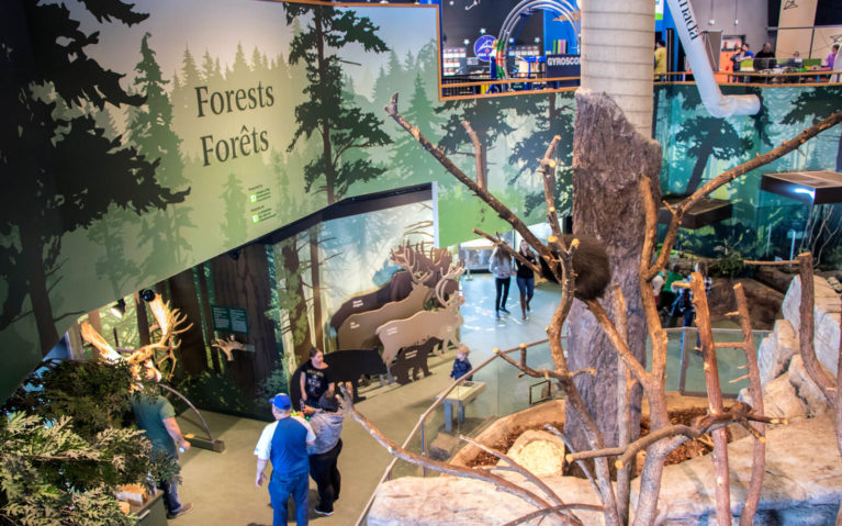 View from Inside Science North in Sudbury Ontario :: I've Been Bit! Travel Blog
