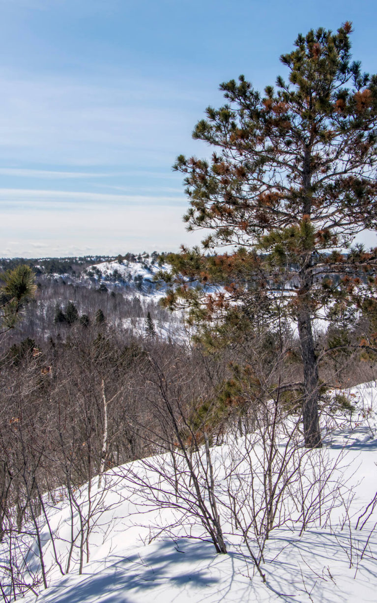 Another One of the Views from the Kivi Park Lookout in Northern Ontario :: I've Been Bit! Travel Blog