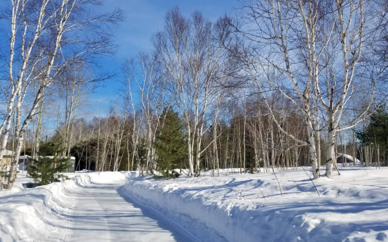 One of the Skating Trails in Sudbury - Kivi Park :: I've Been Bit! Travel Blog