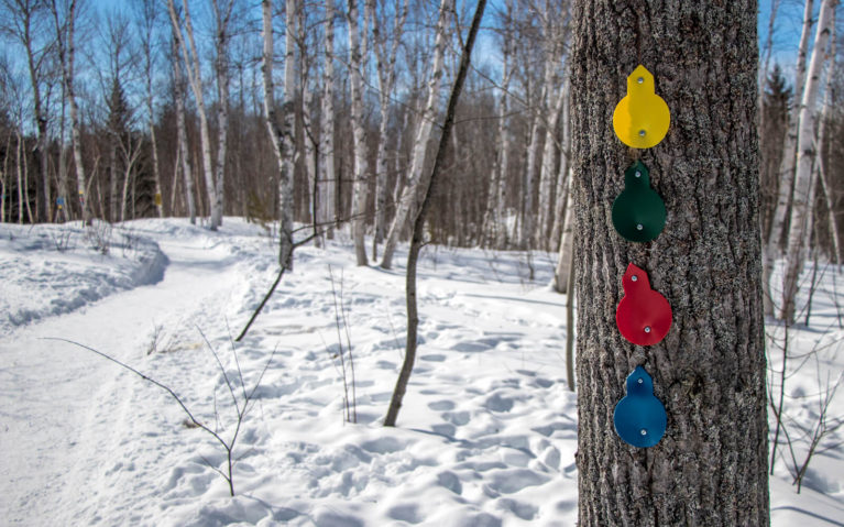 Yellow, Green, Red and Blue Trail Markings along a Snowshoe Trail in Sudbury's Kivi Park :: I've Been Bit! Travel Blog
