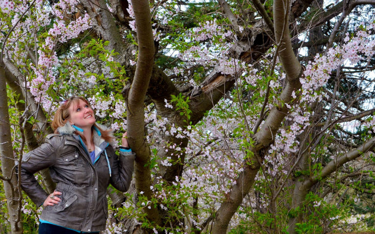 Lindsay Standing with a Cherry Tree Admiring the Blossoms :: I've Been Bit! Travel Blog