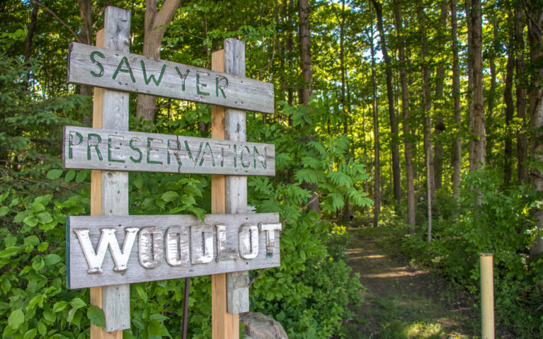 Wooden Sign Marking the Entrance to the Sawyer Preservation Woodlot in Perth County :: I've Been Bit! Travel Blog