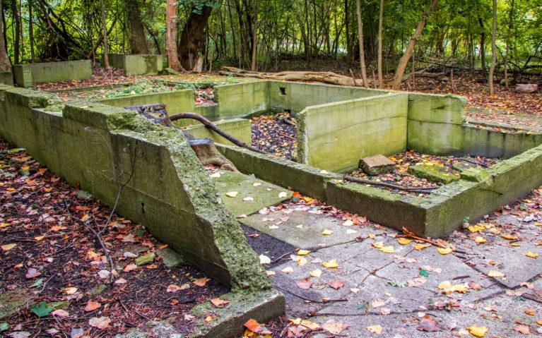 Reclaimed Ruins on Peche Island in Windsor Ontario :: I've Been Bit! Travel Blog