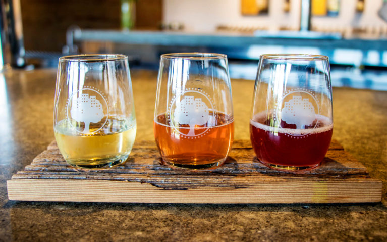 Flight of Various Ciders at an Ontario Cidery :: I've Been Bit! Travel Blog