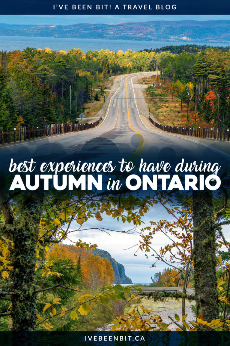 Autumn will come and go before you know it. Want to make the most of the season? Don't miss these incredible things to do in fall in Ontario! Experiences to have in autumn in Ontario. Includes hiking, wine tasting, visiting a cranberry marsh and more! | #Travel #Canada #Ontario #Fall #Autumn | IveBeenBit.ca