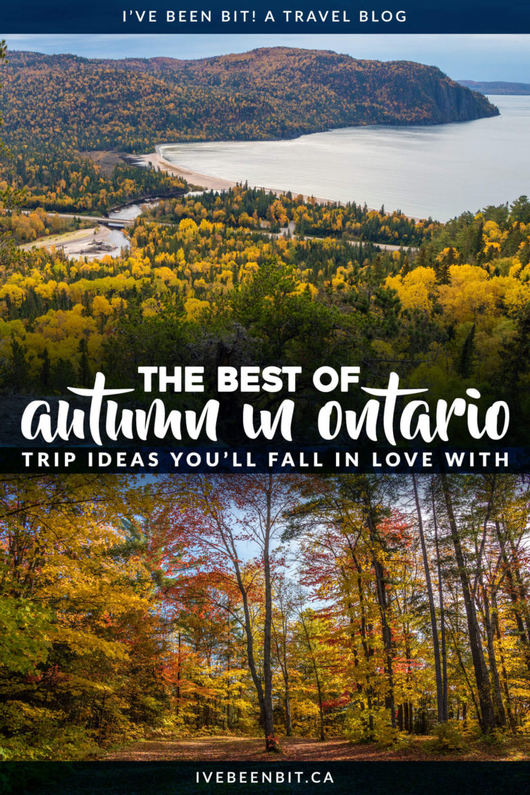 Looking to make the most of autumn in Ontario Canada? You don't want to miss these great things to do in fall in Ontario. Includes hiking trails, cranberry marsh, pumpkin carving and more! | #Travel #Canada #Ontario #Fall #Autumn | IveBeenBit.ca