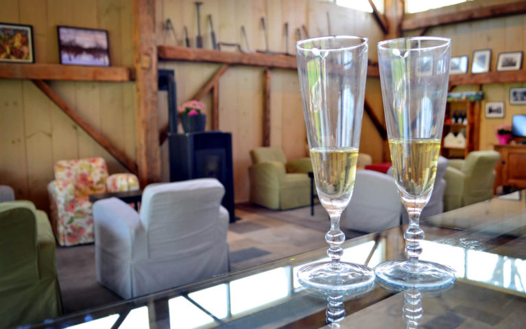 Delicious Dry Cider at Beaver Valley Orchard and Cidery in Grey County Ontario Canada :: I've Been Bit! Travel Blog