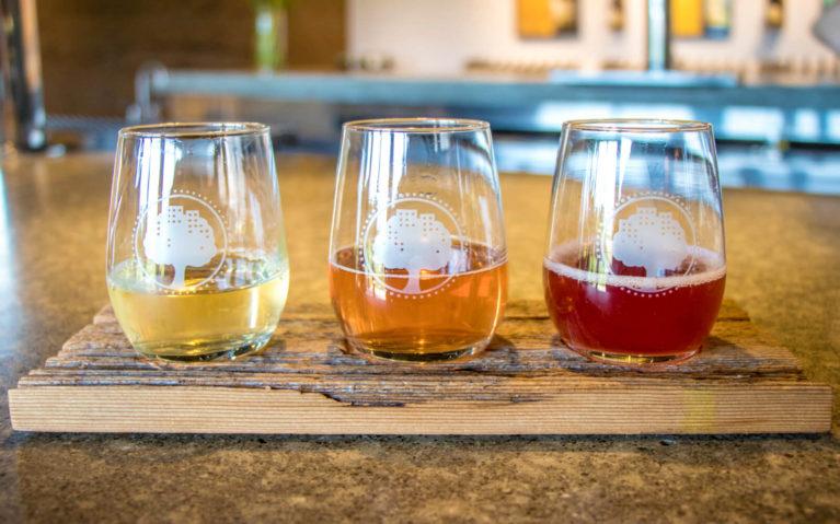 Flight of Cider at West Avenue Cider in Freelton Ontario :: I've Been Bit! Travel Blog
