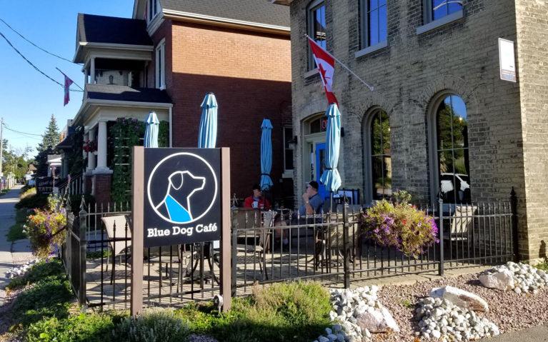 Outside of the Blue Dog Cafe in Brantford Ontario :: I've Been Bit! Travel Blog