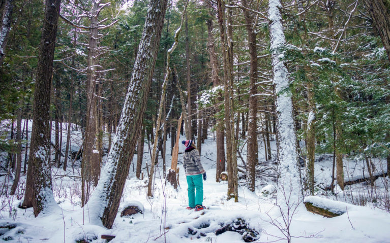 Lindsay Snowshoeing Along the Granite Ridge Trail in Killarney PP :: I've Been Bit! Travel Blog