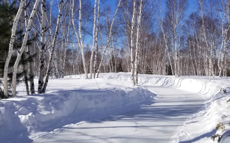 Skate Trail at Kivi Park, a Must-Visit Outdoor Skating Trail in Ontario :: I've Been Bit! Travel Blog