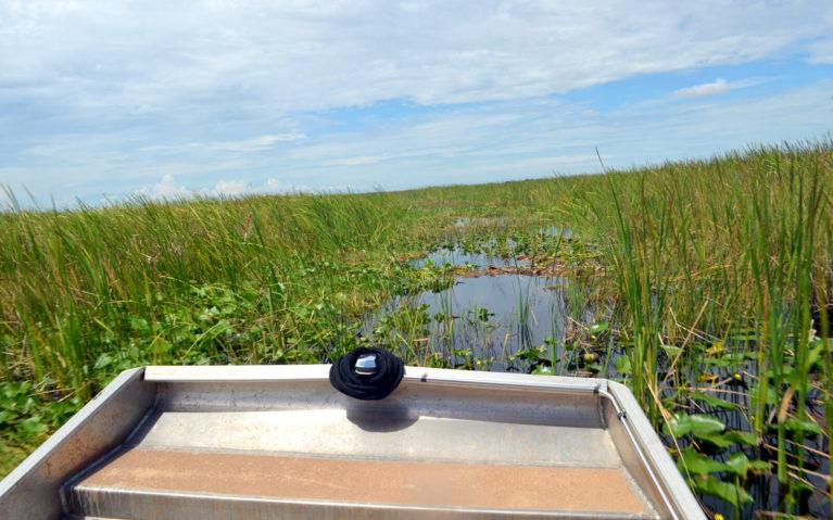 Edge of Boat Tilting Across the Florida Everglades :: I've Been Bit! Travel Blog