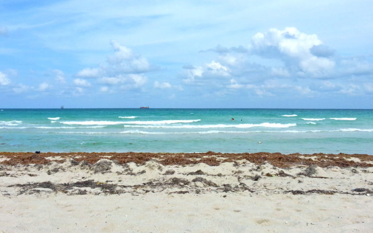 View of the Ocean Along South Beach Miami :: I've Been Bit! Travel Blog