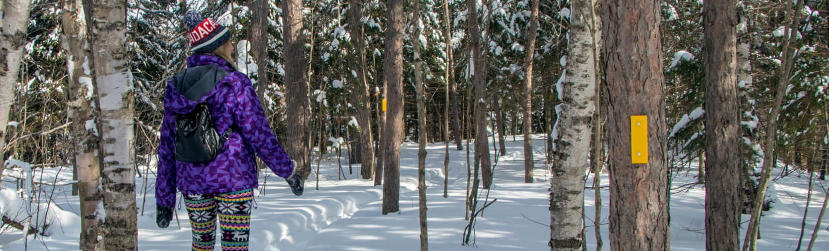 Things to Do in Ontario in Winter: Top 20 Ways to Enjoy the Season :: I've Been Bit! Travel Blog