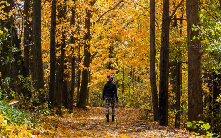 Lindsay Walking Through Waterloo's Bechtel Park in the Autumn :: I've Been Bit! Travel Blog
