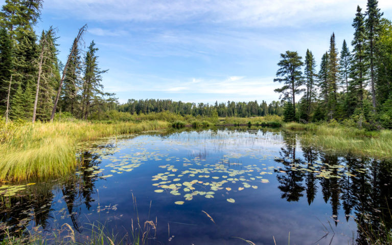 Views from One of the Trails in White Lake Provincial Park :: I've Been Bit! Travel Blog