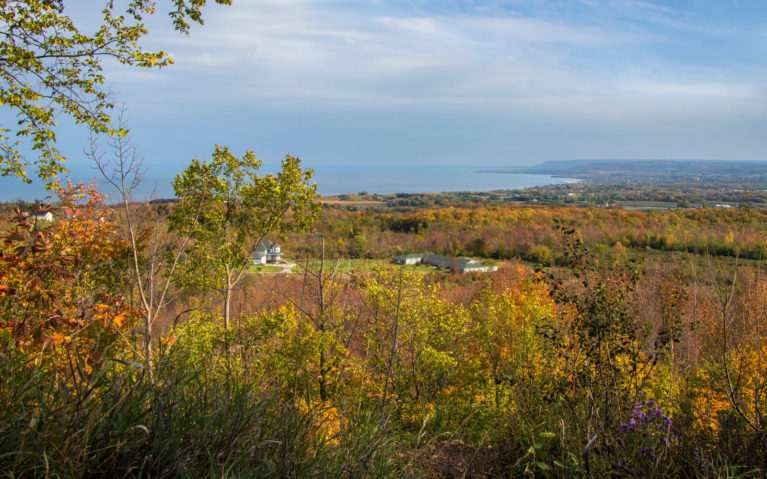 Views from the Irish Mountain Lookout near Meaford in South Georgian Bay :: I've Been Bit! Travel Blog