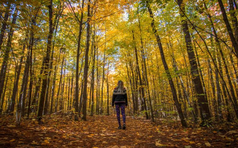 Lindsay Walking Through the Long Sault Conservation Area :: I've Been Bit! Travel Blog
