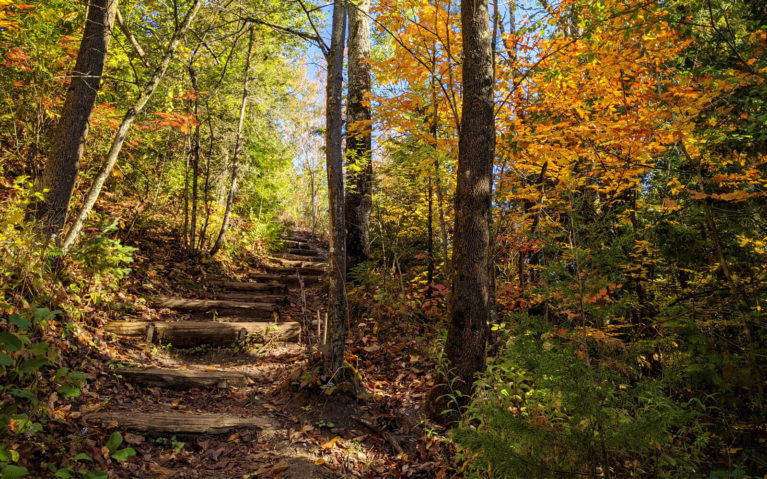Orono Crown Lands Hiking Trails in the Fall :: I've Been Bit! Travel Blog