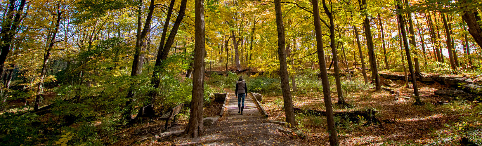 Hamilton Hiking Trails: Your Guide to the Best Hikes in Hamilton :: I've Been Bit! Travel Blog