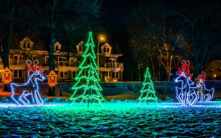 Tree and Reindeer Light Displays at the Lakeside Festival of Lights in Burlington :: I've Been Bit! Travel Blog