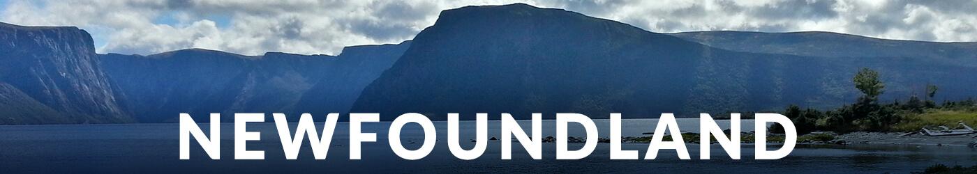 Newfoundland Blog Articles :: I've Been Bit! A Travel Blog