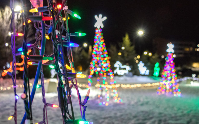 Close Up of the Lights at the Festival of Lights in Sudbury :: I've Been Bit! Travel Blog
