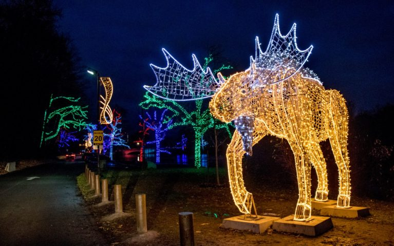 Some of the Displays You'll find at the Winter Festival of Lights in the Dufferin Islands Area :: I've Been Bit! Travel Blog