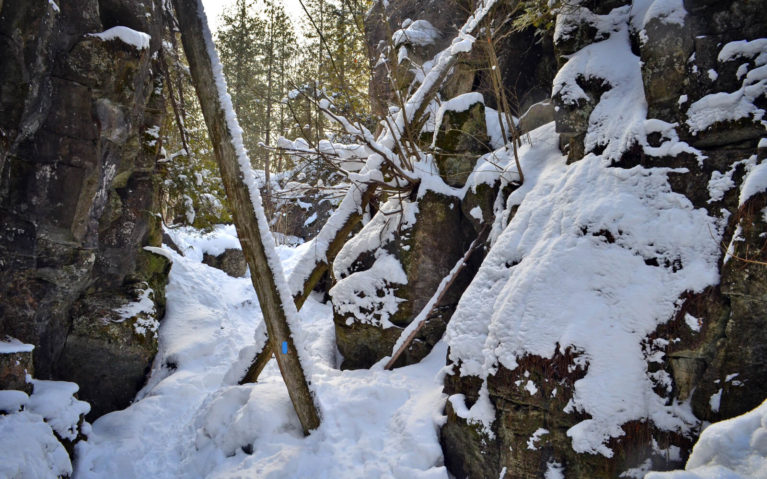 One of the Bruce Trail's Side Trails in Winter :: I've Been Bit! Travel Blog