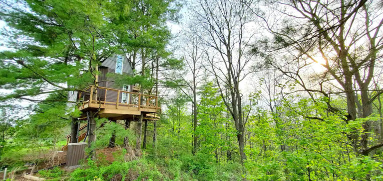 Niagara Region Treehouse from Afar - Image From Facebook :: I've Been Bit! Travel Blog
