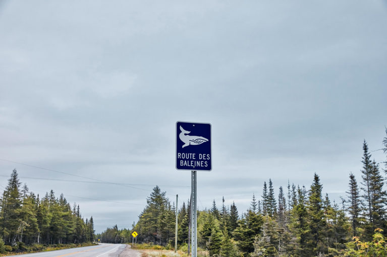 Sign for the Quebec Whale Route Along Route 138 - Photo Credit: TQ/Dominique Lafond