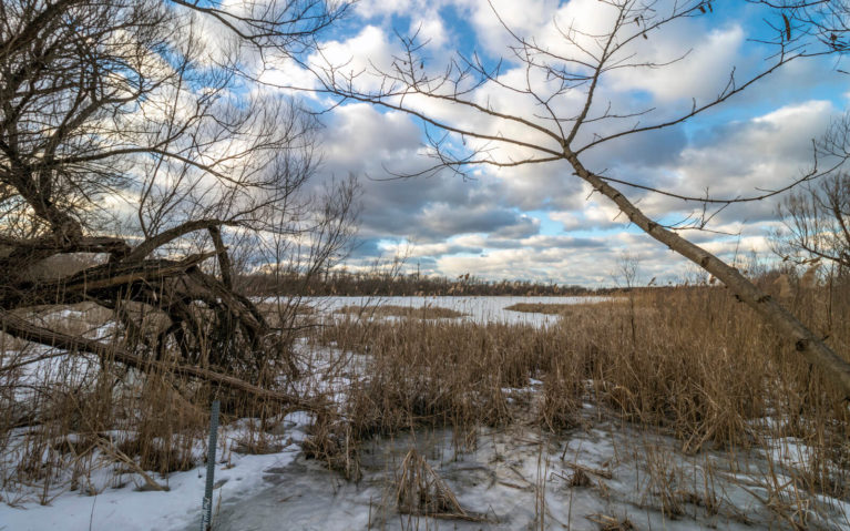 Late Afternoon Views at Mud Lake Conservation Area :: I've Been Bit! Travel Blog
