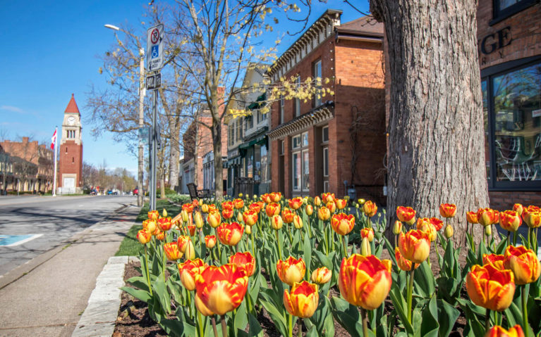 Niagara-on-the-Lake in Spring :: I've Been Bit! Travel Blog