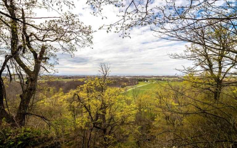 Niagara Hiking Views at Cave Springs Conservation Area :: I've Been Bit! Travel Blog